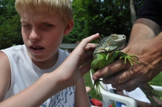 A young camper checks out an iguana.